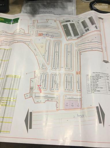 Bán đất nền dự án (khu đô thị Ford Tứ Minh - Hải Dương) ảnh 0