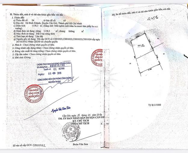 Bán 2156m2 100% đất ở ngay Bình Khánh, gần cao tốc giá rẻ chỉ bằng đất nông nghiệp