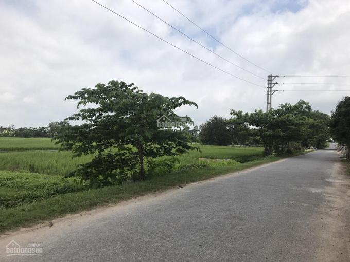 Bán đất phân lô thôn Ngọc Quế, xã Quỳnh Hoa, huyện Quỳnh Phụ, Thái Bình ảnh 0