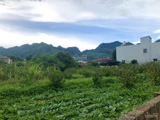Bán 4000m2 hàng hiếm mặt phố đi bộ thị trấn Nông Trường Mộc Châu bám suối 120m ảnh 0