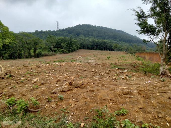 Bán gấp 4600m2 trục chính Hoà Sơn, Lương Sơn, hoà bình phù hợp làm kho xưởng, bến bãi ảnh 0