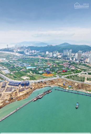Độc quyền cặp shophouse M126 & M225 mặt cảng du thuyền du lịch đẹp nhất Sun Marina Hạ Long ảnh 0