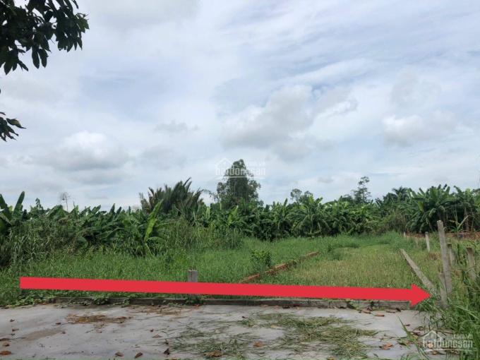 Đất mặt tiền Huỳnh Thị Nở, 5x36, Đông Bắc, Cần Thơ, lộ 20m, thổ cư 100% ảnh 0
