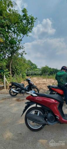 Đất 2 mặt tiền DX 061 Phú An gần ngã tư Phú Thứ 300m DT 6x45m thổ cư 100m2 chỉ cách HL 609 vào 100m ảnh 0