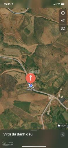 Đất Mộc Châu, làm trang trại nghỉ dưỡng, giá chưa đến 100 ngàn/m2 gần Quốc Lộ 43 ảnh 0