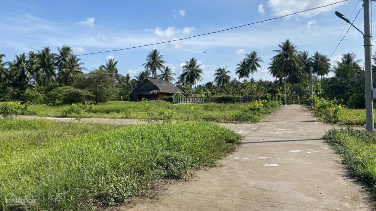 Bán đất xây biệt thự vườn siêu đẹp, đất vuông vức tại xã Quới Sơn gần UBND xã - 0906816289 ảnh 0