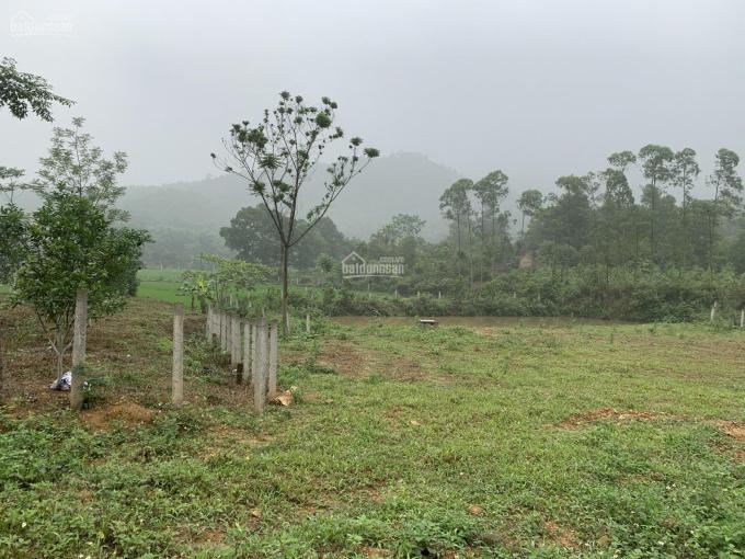 Chính chủ bán lô đất hơn 5700m2 siêu hot Ngọc Thanh, Phúc Yên ảnh 0