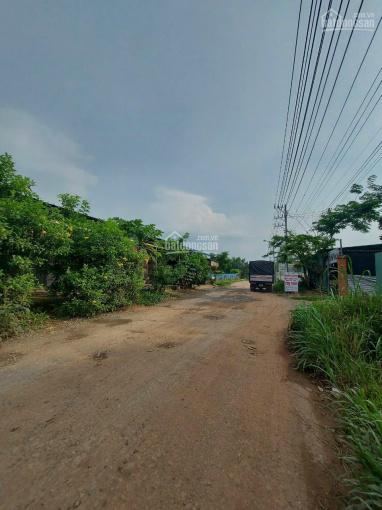 Đất An Tây, gần chợ Thùng Thơ DT: 36x31m có 100m2 thổ cư, đường bê tông 6m Giá 6.3 tỷ, LH ảnh 0
