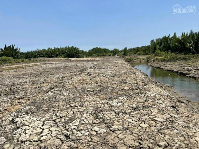 Đất đẹp đường xe hơi có mặt sông giá chỉ 1,3 tỷ, gần khu dân cư cách đường Hùng Vương 1.5km, giá rẻ ảnh 0