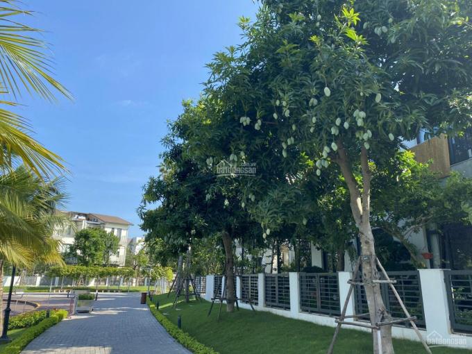 Cho thuê các nhà biệt thự đẹp tại khu đô thị Vinhomes Thăng Long, Hoài Đức, Hà Nội ảnh 0