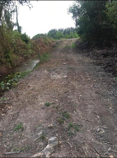 Bán lô đất vườn 1500m2 Kênh 10 cấp 3 Lê Đình Chi, Lê Minh Xuân Bình Chánh ảnh 0
