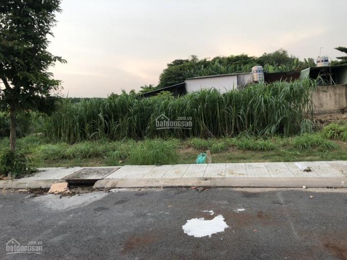 Bán đất chính chủ Tân Thông Hội, Củ Chi, DT 101m2, ngang 5x20m ảnh 0