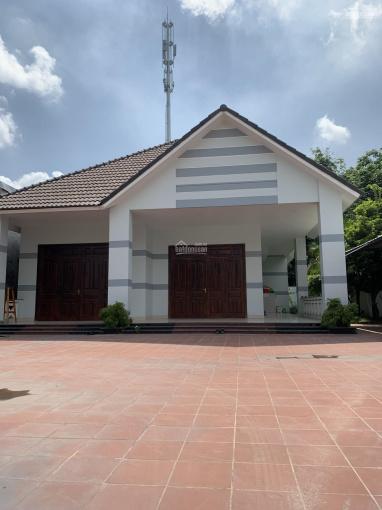 Cho thuê biệt thự sân vườn Phường Phú Mỹ gần uỷ ban Phường Phú Mỹ ảnh 0