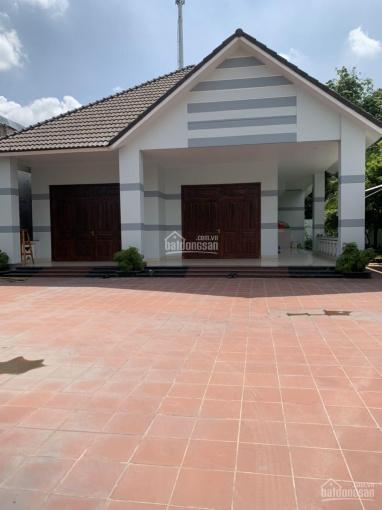 Cho thuê biệt thự Phú Mỹ 630m2 đối diện khu đô thị Phúc Đạt và KDC Hiệp Thành 3 ảnh 0