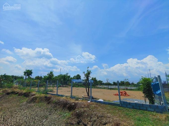 Bán lô đất lúa trong thị trấn Cần Giuộc đường xe hơi, SHR, 1268m2 giá 2,4 tỷ ảnh 0
