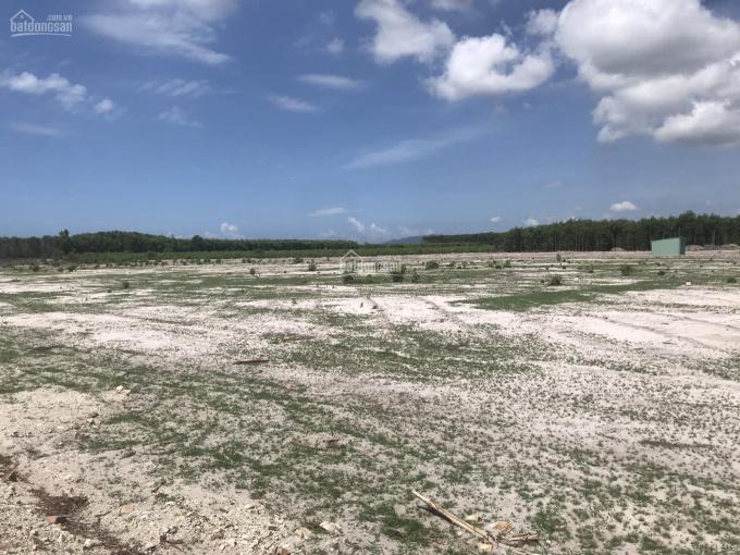Đất mặt tiền 12m, Hồ Tràm, sổ riêng thổ cư liền kề Habana Novaland giá 6tr3/m2 ảnh 0