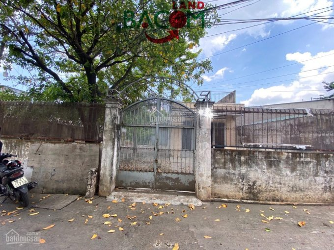 Bán đất DT 284m2 sổ riêng, thổ cư trung tâm Biên Hoà, P. Tân Mai, giá chỉ 7,2 tỷ ảnh 0