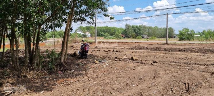 Đất bán gần Sân Bay QT Long Thành, Đồng Nai, mặt tiền đường Bàu Cạn, DT 5580m2, LH 0972388636 Thuần ảnh 0