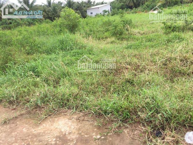 Bán đất nền chính chủ Phường Phú Khương, TP. Bến Tre 260m2, 4,5 triệu/m2. LH: 0902631767 ảnh 0