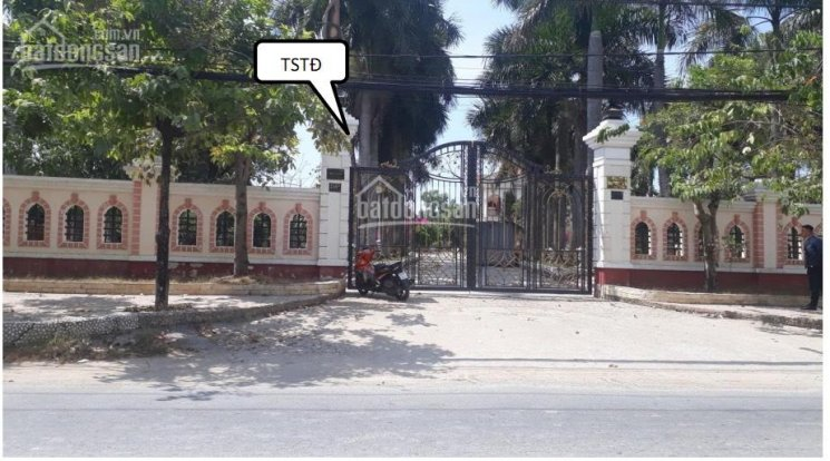 Bán xưởng 5000m2 Xuân Thới Sơn, Hóc Môn giá 85 tỷ