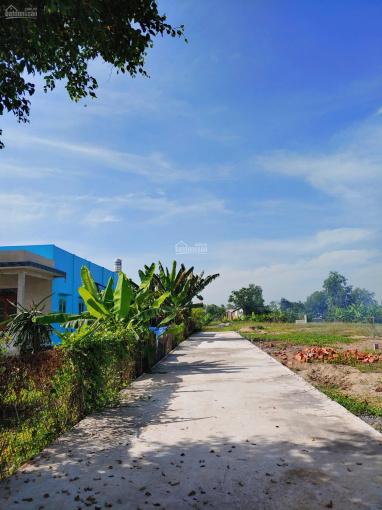 Bán lô góc 99m2 đất thổ giá 1,2 tỷ mặt tiền đường Mỹ Lộc - Phước Hậu, Cần Giuộc, Long An, SHR ảnh 0