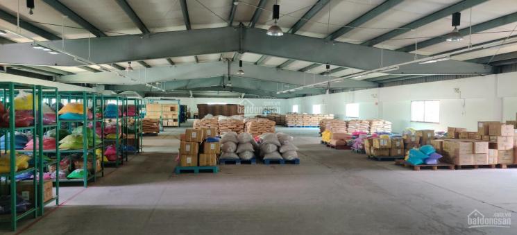 Cho thuê kho xưởng 4000m2 trong Khu chế xuất Tân Thuận, Quận 7, TP.HCM ảnh 0