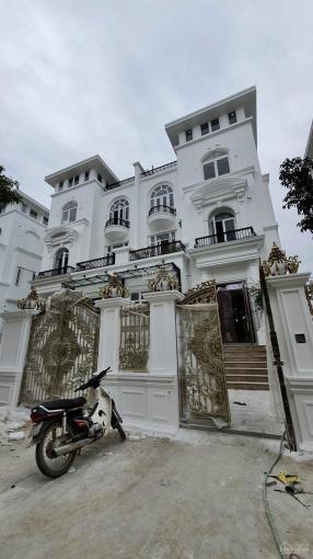 Tổng hợp lô ngoại giao shophouse liền kề biệt thự giá tốt nhất Louis City Hoàng Mai. LH 0962613660 ảnh 0