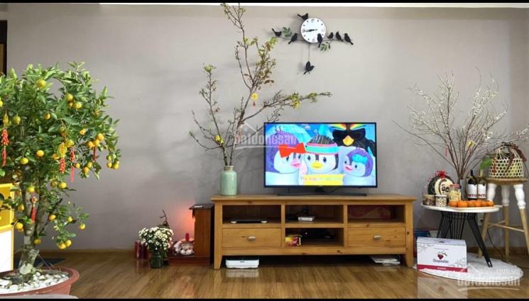 Bán căn hộ Ruby Garden, quận Tân Bình, có sổ hồng, 105m2 2PN 2WC, full nội thất cao cấp ảnh 0