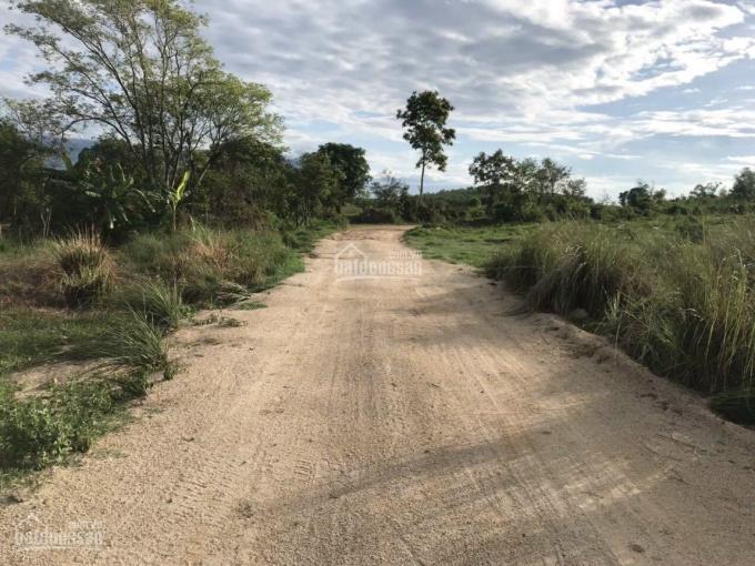 Rẫy đẹp tại Ninh Tây bao bằng phẳng, đường rộng