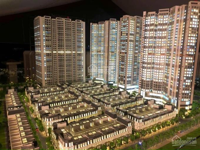 Chuyển nhượng lô góc hai mặt tiền view trung tâm thương mại dự án Hoàng Huy Mall ảnh 0