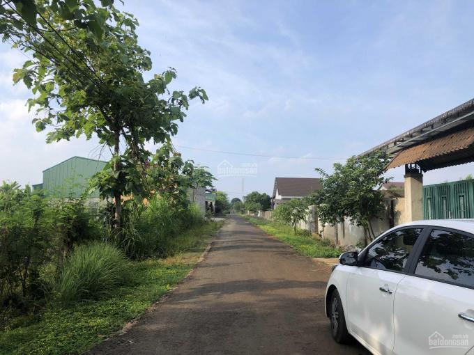 Bán đất làm nhà vườn view cánh đồng xã Hòa Xuân 20x35m, TC 75m2, giá 950 triệu ảnh 0