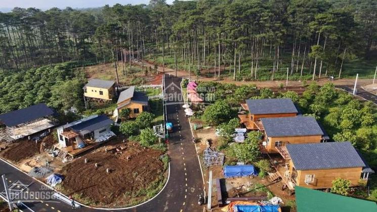 Mua đất tặng nhà tại làng sinh thái ngay Bảo Lộc ảnh 0