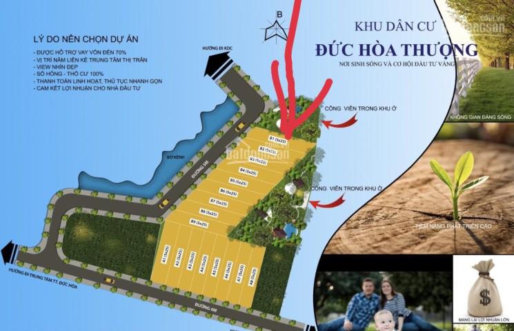 Bán rẻ lô đất DT 116m2, đường nhựa ô tô, Đức Hòa, Long An. Lh 0979153933 ảnh 0