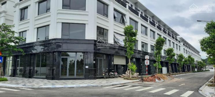 Mua ngay dự án tiềm năng sinh lợi cực cao của Shophouse Apec Lạng Sơn - Lạng Sơn ảnh 0