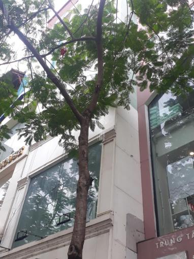 Bán nhà mặt phố Nguyễn Thị Thập, Cầu Giấy 90m2 giá 40 tỷ ảnh 0