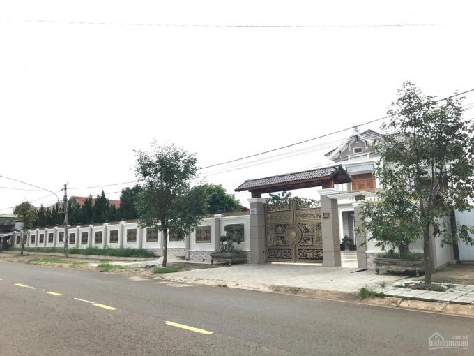 Phá sản bán gấp siêu biệt thự MT Nguyễn Tri Phương, Lộc Tiến ảnh 0