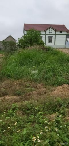 Cần việc bán lô đất khu quy hoạch ở thôn 10, xã Lý Trạch, Huyện Bố Trạch, Tỉnh Quảng Bình ảnh 0