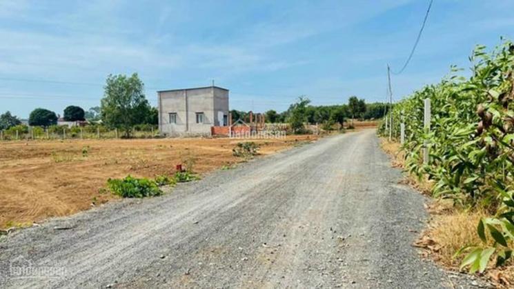 Cần tiền bán rẻ lô đất Tân Vĩnh Hiệp, DT 166m2. Cách DT 746 chỉ 300m, SHR ảnh 0