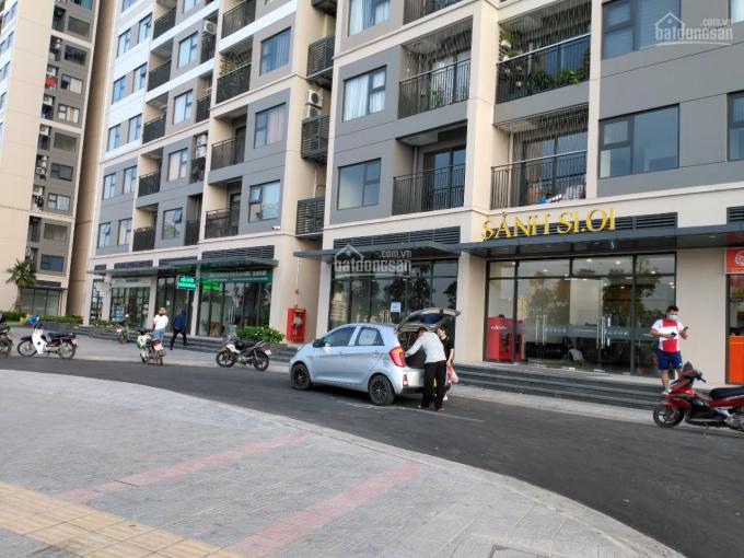 Chính chủ bán kiot ở ngã ba 27m2 vị trí hoa hậu của Vinhomes Smart City kinh doanh cực tốt ảnh 0