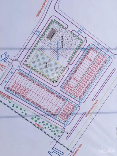 Cần tiền bán cắt lỗ lô đất đấu giá Bỉm Sơn đã có sổ đỏ ảnh 0