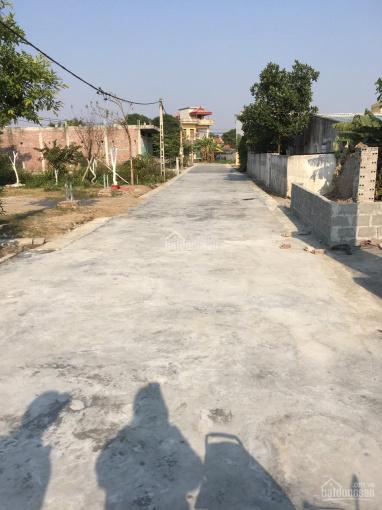 Chính chủ bán lô đất chưa sổ, diện tích 100 m2, ngõ rộng 6 m tại Thắng Cựu - Phú Xuân ảnh 0