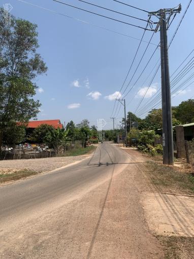 Kẹt tiền bán gấp 7,5 sào đất xã Phú Lý, Vĩnh Cửu ảnh 0