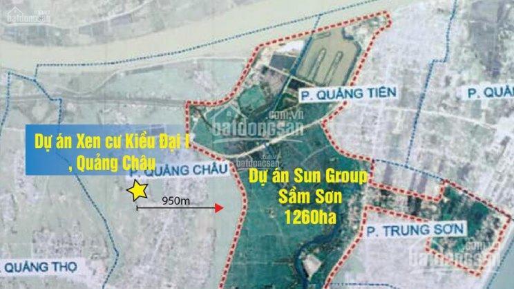 Bán 10 lô LK đất nền phường Quảng Châu - TP Sầm Sơn giá đầu tư ảnh 0