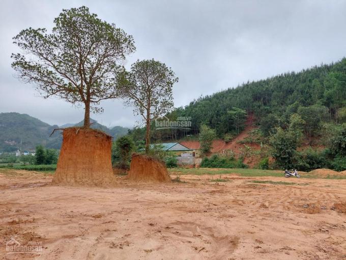 Bán gấp lô đất 2,5ha Mường Sang, Mộc Châu, Sơn La cực đẹp giá rẻ ảnh 0