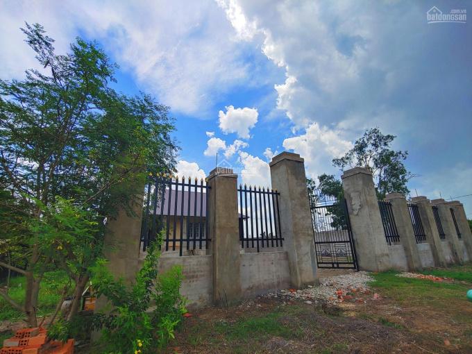 Nhà vườn 1086m2 ven sông thị trấn Cần Giuộc, đường xe hơi, SHR giá chỉ 4,2 tỷ ảnh 0