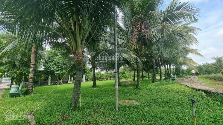 Bán nhà vườn nghỉ dưỡng 2 ha, Thạnh Phú, Vĩnh Cửu, Đồng Nai