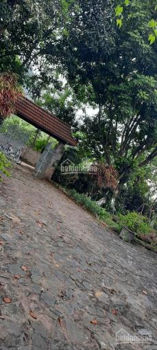 Bán khuôn view hoàn thiện sẵn ở đẹp rẻ số 1 Lương Sơn, cách Hà Nội 45p lái xe, nơi tránh dịch