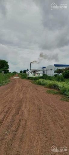 Gia đình bán gấp 16700m2 đất có thổ cư gần ngay khu công nghiệp An Tây, Bến Cát, xã An Tây ảnh 0