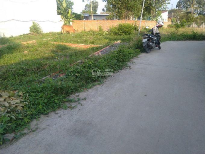 Do kẹt tiền nên tôi cần bán gấp lô đất Phước An, giá rẻ, cách đường Hùng Vương 100m, LH 0362966460 ảnh 0