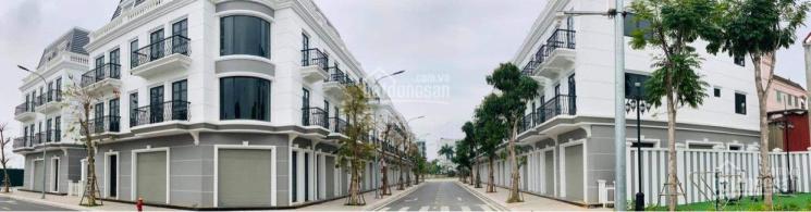 Shophouse Vincom Thái Hòa SĐ vĩnh viễn hỗ trợ vay 70% 36 tháng ân hạn lãi và gốc tặng voucher 200tr ảnh 0